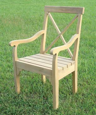 Xylo Dining Arm Chair